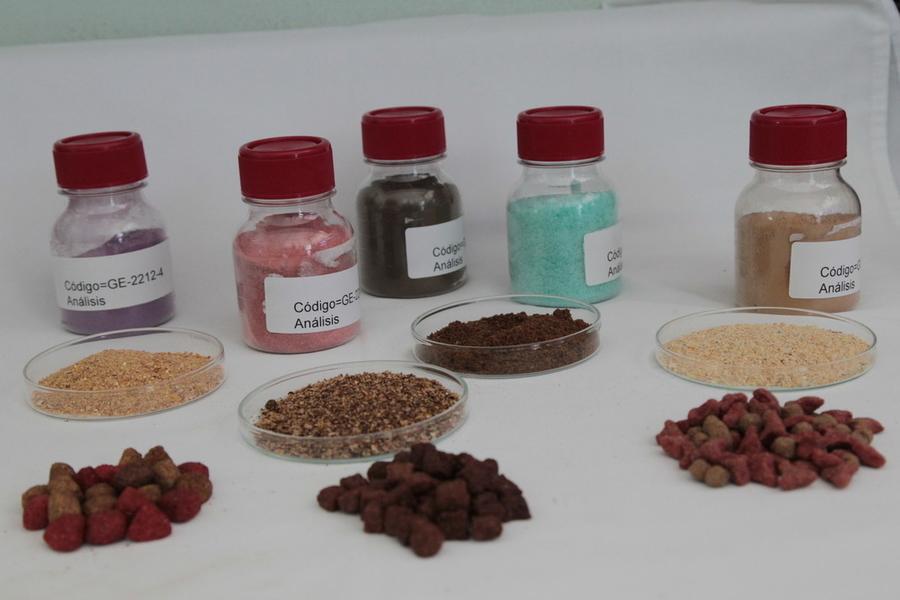 26/08/2014, Centro de Investigaciones en Nutrición Animal, CINA